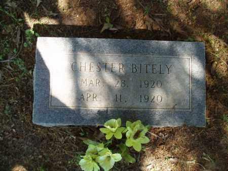 BITELY, CHESTER - Jefferson County, Arkansas   CHESTER BITELY - Arkansas Gravestone Photos