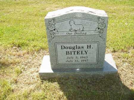 BITELY, DOUGLAS H - Jefferson County, Arkansas   DOUGLAS H BITELY - Arkansas Gravestone Photos