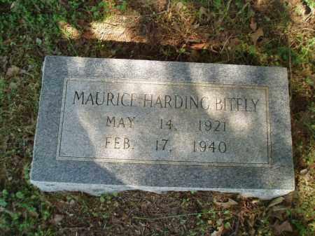 BITELY, MAURICE HARDING - Jefferson County, Arkansas | MAURICE HARDING BITELY - Arkansas Gravestone Photos