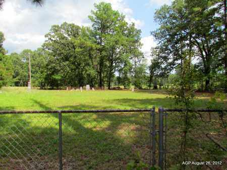 *BLACKWELL HILL OVERVIEW,  - Jefferson County, Arkansas |  *BLACKWELL HILL OVERVIEW - Arkansas Gravestone Photos