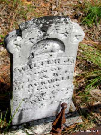 BLACKWELL, WALTER J - Jefferson County, Arkansas   WALTER J BLACKWELL - Arkansas Gravestone Photos