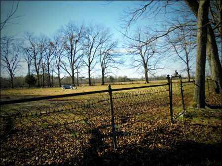 BRADSHAW, FAMILY - Jefferson County, Arkansas | FAMILY BRADSHAW - Arkansas Gravestone Photos