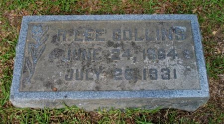 COLLINS, R. LEE - Jefferson County, Arkansas | R. LEE COLLINS - Arkansas Gravestone Photos