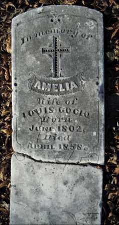 GOCIO, AMELIA - Jefferson County, Arkansas | AMELIA GOCIO - Arkansas Gravestone Photos