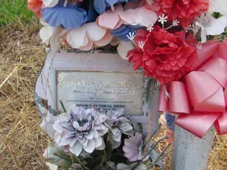 JACKSON, CHRISTOPHER - Jefferson County, Arkansas | CHRISTOPHER JACKSON - Arkansas Gravestone Photos