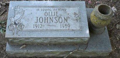 JOHNSON, OLLIE - Jefferson County, Arkansas | OLLIE JOHNSON - Arkansas Gravestone Photos