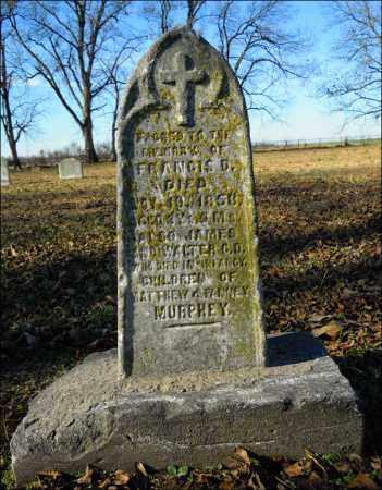 MURPHEY, WALTER - Jefferson County, Arkansas | WALTER MURPHEY - Arkansas Gravestone Photos