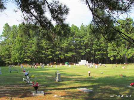 *OVERVIEW,  - Jefferson County, Arkansas |  *OVERVIEW - Arkansas Gravestone Photos