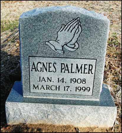 PALMER, AGNES - Jefferson County, Arkansas | AGNES PALMER - Arkansas Gravestone Photos