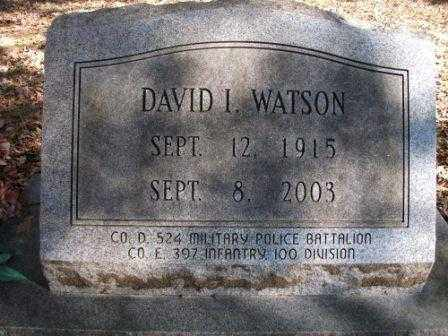 WATSON, DAVID I - Jefferson County, Arkansas   DAVID I WATSON - Arkansas Gravestone Photos