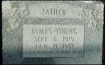 YOUNG, JAMES - Jefferson County, Arkansas | JAMES YOUNG - Arkansas Gravestone Photos