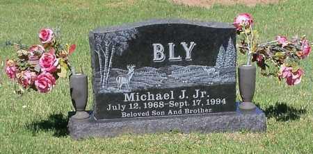 BLY,  JR, MICHAEL J - Johnson County, Arkansas | MICHAEL J BLY,  JR - Arkansas Gravestone Photos