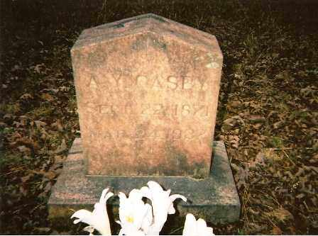 CASEY, ARCHIBALD YELL - Johnson County, Arkansas | ARCHIBALD YELL CASEY - Arkansas Gravestone Photos