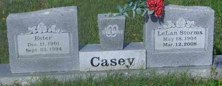 CASEY, LELAN - Johnson County, Arkansas | LELAN CASEY - Arkansas Gravestone Photos