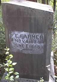 FARMER, F E - Johnson County, Arkansas | F E FARMER - Arkansas Gravestone Photos