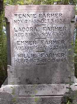 FARMER, WILLIE - Johnson County, Arkansas | WILLIE FARMER - Arkansas Gravestone Photos