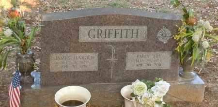 GRIFFITH, EMILY FRY - Johnson County, Arkansas | EMILY FRY GRIFFITH - Arkansas Gravestone Photos