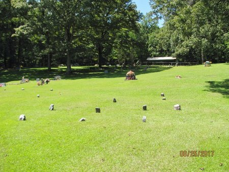 *OVERVIEW,  - Johnson County, Arkansas    *OVERVIEW - Arkansas Gravestone Photos