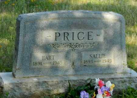 PRICE, SALLIE - Johnson County, Arkansas   SALLIE PRICE - Arkansas Gravestone Photos