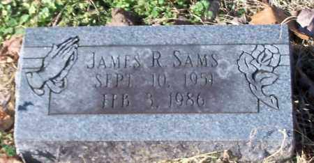 SAMS, JAMES R - Johnson County, Arkansas | JAMES R SAMS - Arkansas Gravestone Photos