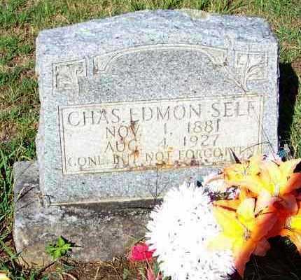 SELF, CHARLES EDMON - Johnson County, Arkansas | CHARLES EDMON SELF - Arkansas Gravestone Photos