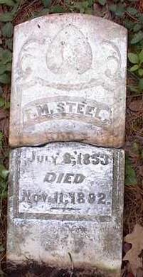 STEELE, F  M - Johnson County, Arkansas | F  M STEELE - Arkansas Gravestone Photos