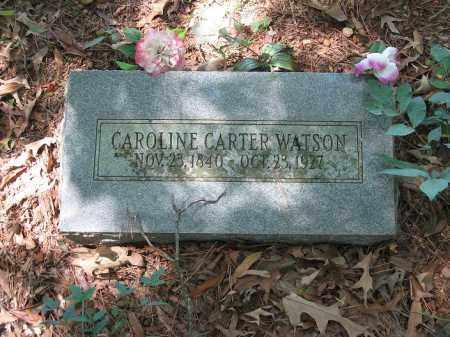 WATSON, CAROLINE - Johnson County, Arkansas   CAROLINE WATSON - Arkansas Gravestone Photos