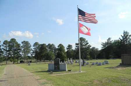 *CEMETERY VIEW,  - Lafayette County, Arkansas |  *CEMETERY VIEW - Arkansas Gravestone Photos