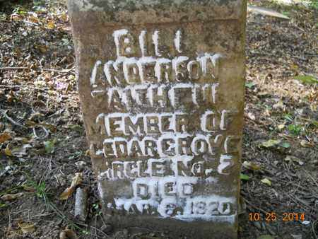 ANDERSON, BILL - Lafayette County, Arkansas | BILL ANDERSON - Arkansas Gravestone Photos