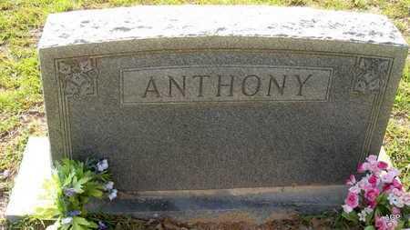 ANTHONY FAMILY STONE,  - Lafayette County, Arkansas |  ANTHONY FAMILY STONE - Arkansas Gravestone Photos