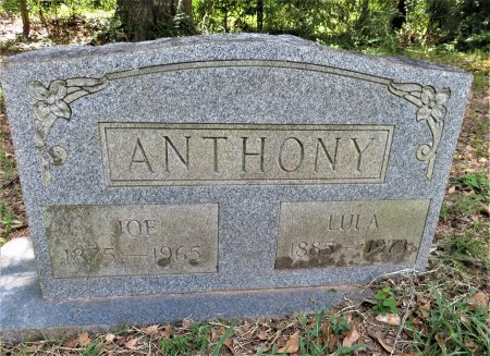 ANTHONY, JOE - Lafayette County, Arkansas | JOE ANTHONY - Arkansas Gravestone Photos