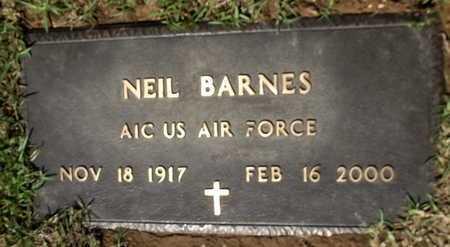 BARNES, NEIL - Lafayette County, Arkansas | NEIL BARNES - Arkansas Gravestone Photos