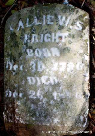 BRIGHT, SALLIE W S - Lafayette County, Arkansas   SALLIE W S BRIGHT - Arkansas Gravestone Photos