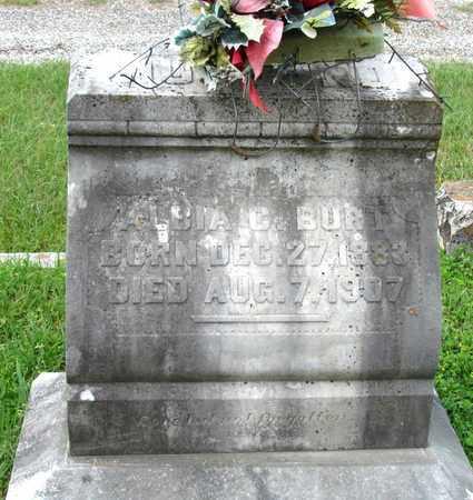 BURT, ALBIA C. - Lafayette County, Arkansas | ALBIA C. BURT - Arkansas Gravestone Photos
