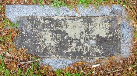 LESTER BURTON, LILLIAN - Lafayette County, Arkansas   LILLIAN LESTER BURTON - Arkansas Gravestone Photos