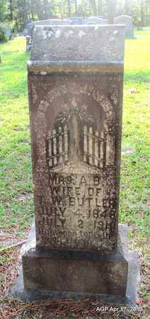 BUTLER, ALEMEDA BLANCHE - Lafayette County, Arkansas | ALEMEDA BLANCHE BUTLER - Arkansas Gravestone Photos
