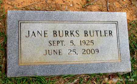 BUTLER, JANE - Lafayette County, Arkansas | JANE BUTLER - Arkansas Gravestone Photos