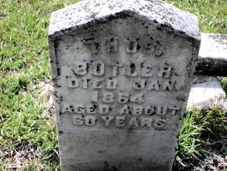 BUTLER, THOMAS - Lafayette County, Arkansas   THOMAS BUTLER - Arkansas Gravestone Photos