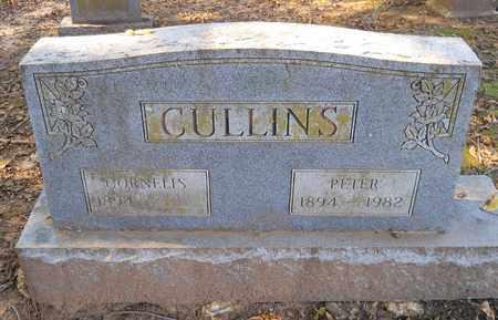 LEWIS CULLINS, CORNELIUS - Lafayette County, Arkansas   CORNELIUS LEWIS CULLINS - Arkansas Gravestone Photos
