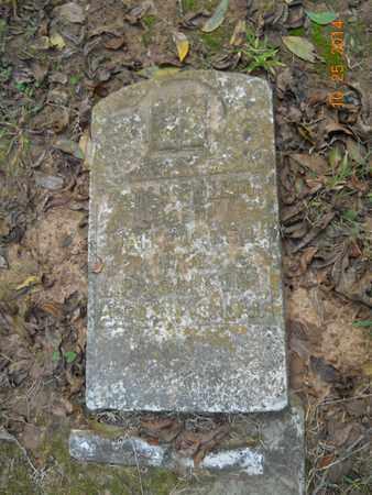 CULLINS, PETER - Lafayette County, Arkansas | PETER CULLINS - Arkansas Gravestone Photos
