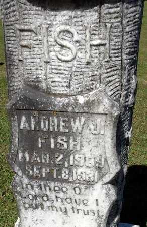 FISH, ANDREW (CLOSE UP) - Lafayette County, Arkansas | ANDREW (CLOSE UP) FISH - Arkansas Gravestone Photos