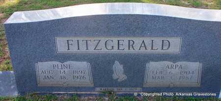 FITZGERALD, PLINE - Lafayette County, Arkansas   PLINE FITZGERALD - Arkansas Gravestone Photos