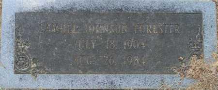 FORESTER, SAMUEL JOHNSON - Lafayette County, Arkansas | SAMUEL JOHNSON FORESTER - Arkansas Gravestone Photos
