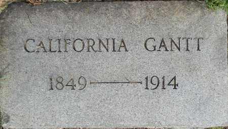 GANTT, CALIFORNIA - Lafayette County, Arkansas | CALIFORNIA GANTT - Arkansas Gravestone Photos