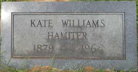 WILLIAMS HAMITER, KATE - Lafayette County, Arkansas   KATE WILLIAMS HAMITER - Arkansas Gravestone Photos
