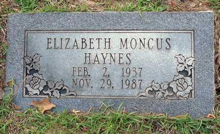 HAYNES, ELIZABETH - Lafayette County, Arkansas | ELIZABETH HAYNES - Arkansas Gravestone Photos