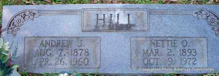 HILL, NETTIE O - Lafayette County, Arkansas | NETTIE O HILL - Arkansas Gravestone Photos