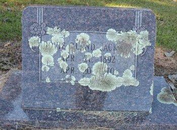 JACKSON, DOVIE - Lafayette County, Arkansas | DOVIE JACKSON - Arkansas Gravestone Photos