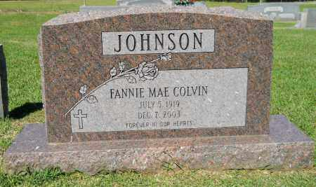 JOHNSON, FANNIE MAE - Lafayette County, Arkansas | FANNIE MAE JOHNSON - Arkansas Gravestone Photos