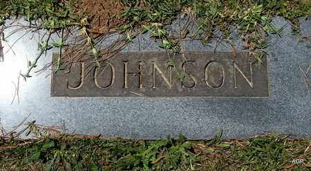 JOHNSON, FAMILY PLOT MARKER - Lafayette County, Arkansas   FAMILY PLOT MARKER JOHNSON - Arkansas Gravestone Photos